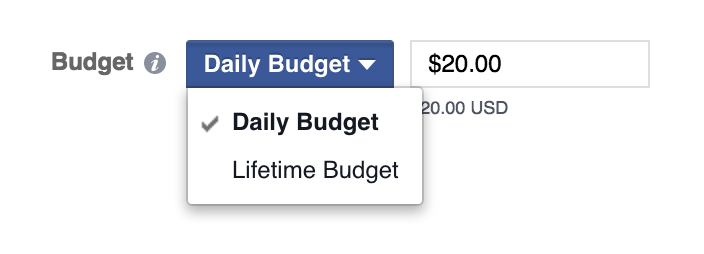 Facebook ads choose a budget