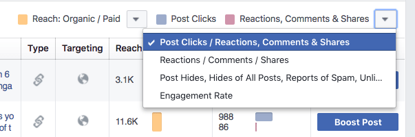 Facebook Page Insights - Engagement options