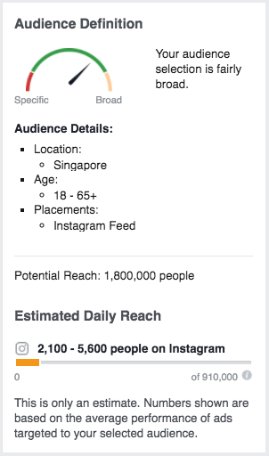 Facebook ads manager audience information