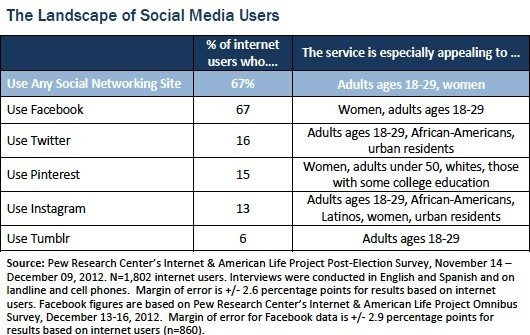 social media demographics in 2013