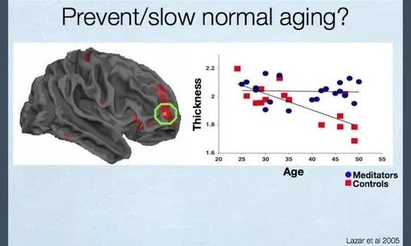 how meditation affects your brain - aging
