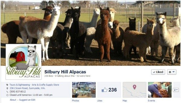 Alpaca Facebook header