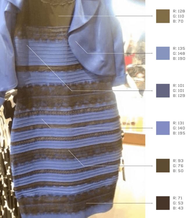the science of the dress