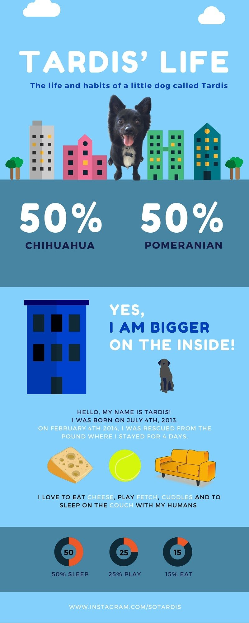 Tardis Life infographic