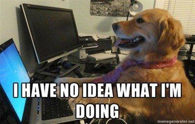 i-have-no-idea-what-im-doing-dog_medium