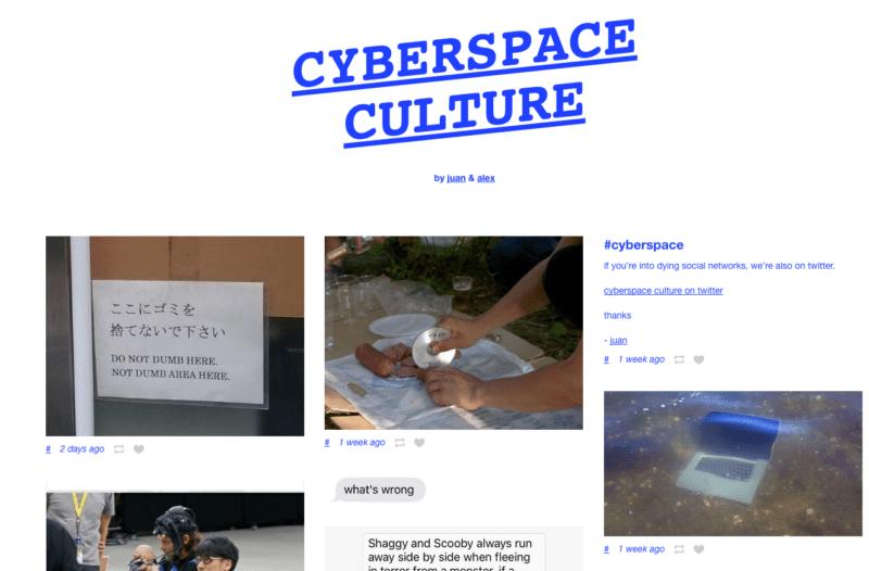 Cyberspace Culture