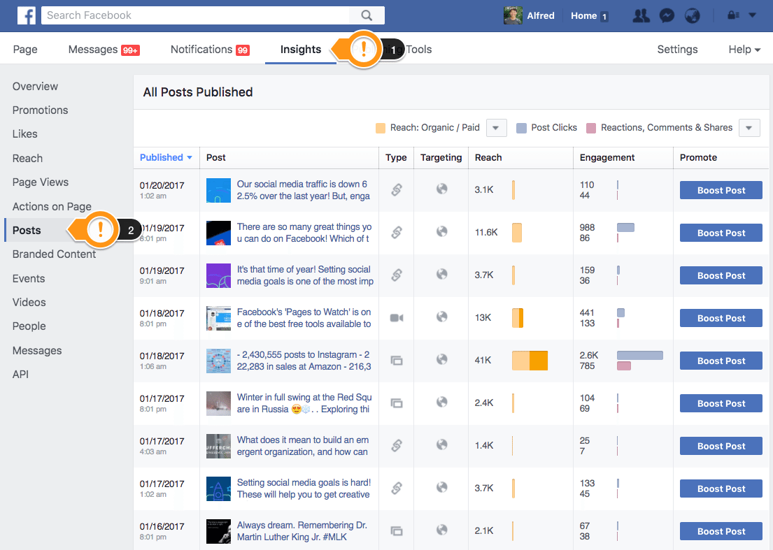 Facebook Page Insights - Posts