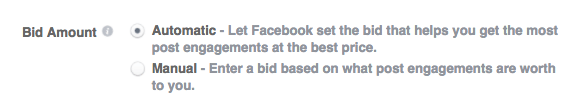 Facebook automatic or manual bid options