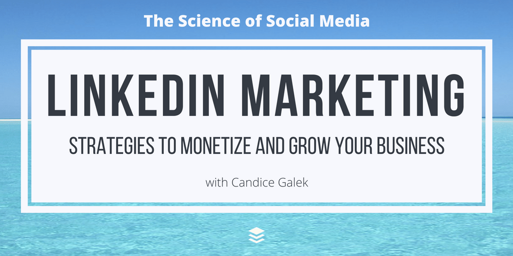 LinkedIn Marketing: Strategies to Monetize and Grow Your Business