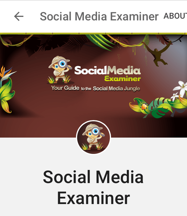 Google+ cover photo on mobile