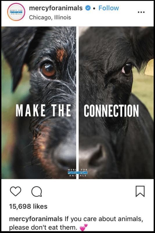 MFA Instagram Post