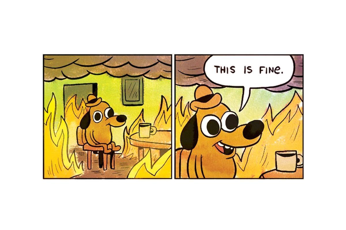 """This is fine"" meme"