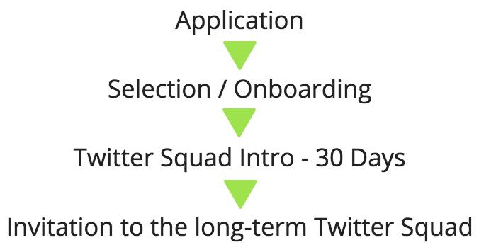 Twitter squad flow