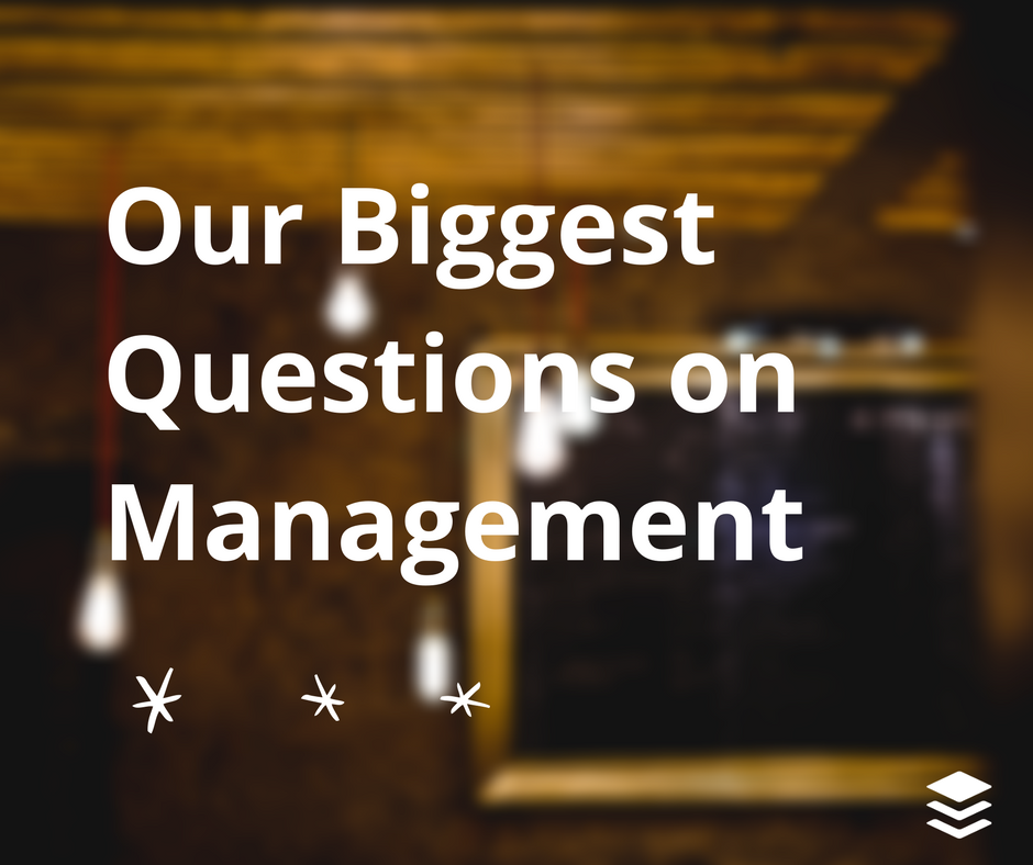 management questions